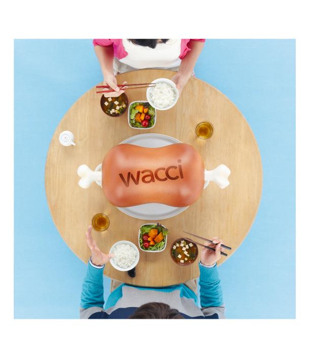 wacci-1