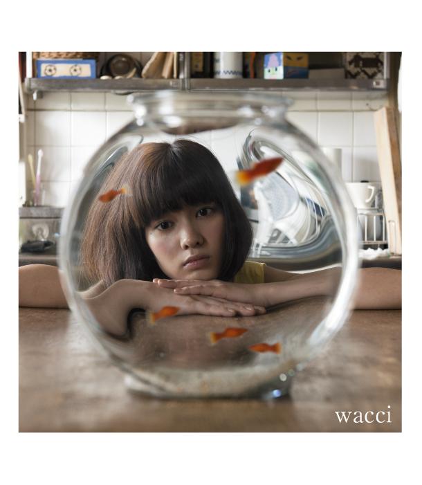 wacci-4
